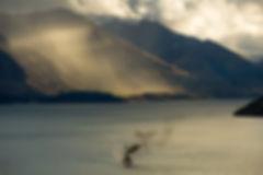 Prin of Lake Wakatipu, Queenstown