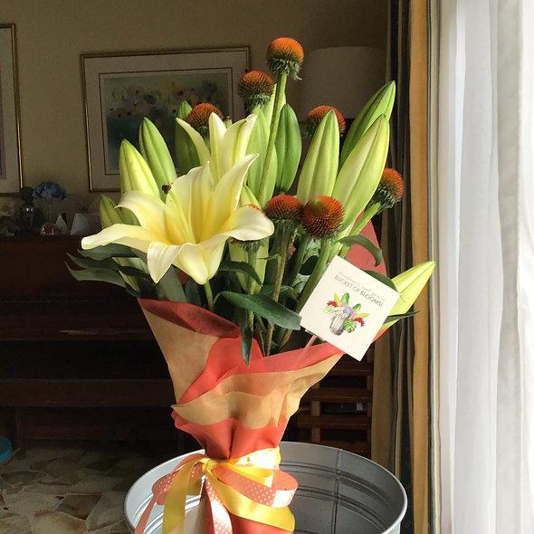 A joyful bloom - Lilies