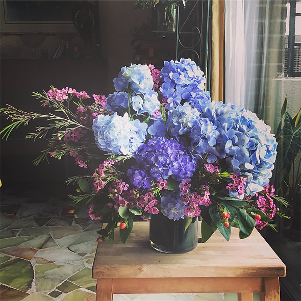 Gorgeous Hydrangeas