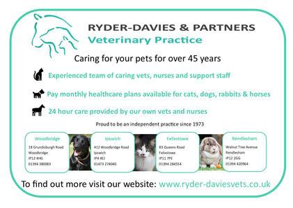 Ryder Davies Advert 2021.jpg