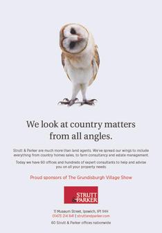 SP_Owl Advert_HI RES.jpg