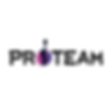 proteam logo.png