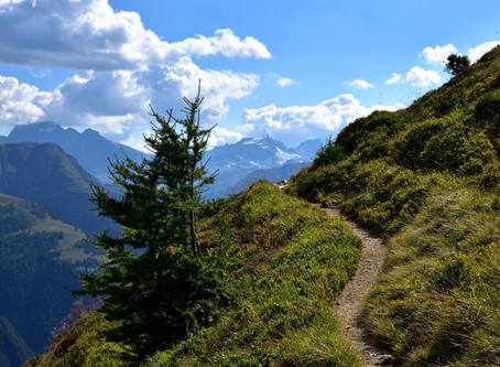 The Path Less Travelled: A Personal (Coding) Story