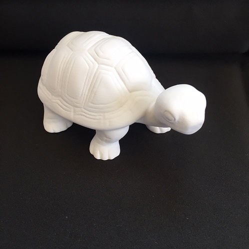 PYOP Kit: Turtle