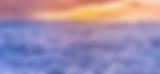 Screen Shot 2019-02-03 at 6.39.46 PM.png
