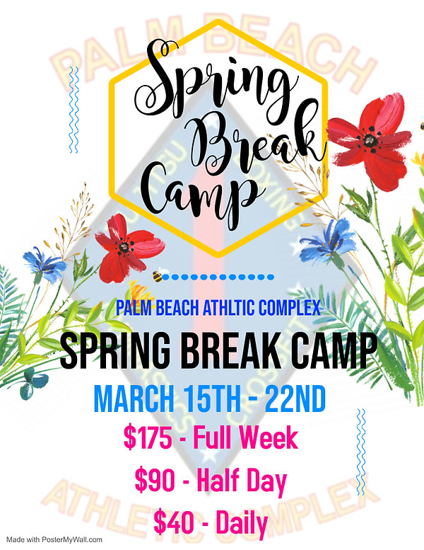Copy of Spring Break Flyer - Made with P