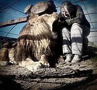 Loup, chien loup Tchécoslovaque, spectacle animalier, spectacle médiévale, théâtre, cinéma, événementiel, dresseur de loups pour le cinéma, dresseur de chien, location d'animaux, dresseur animalier, loups,