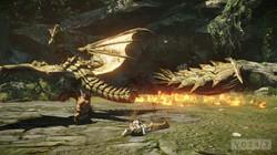 05 monster hunter online beta .jpg