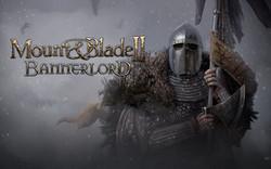 mount & blade II bannerlord beta.jpg