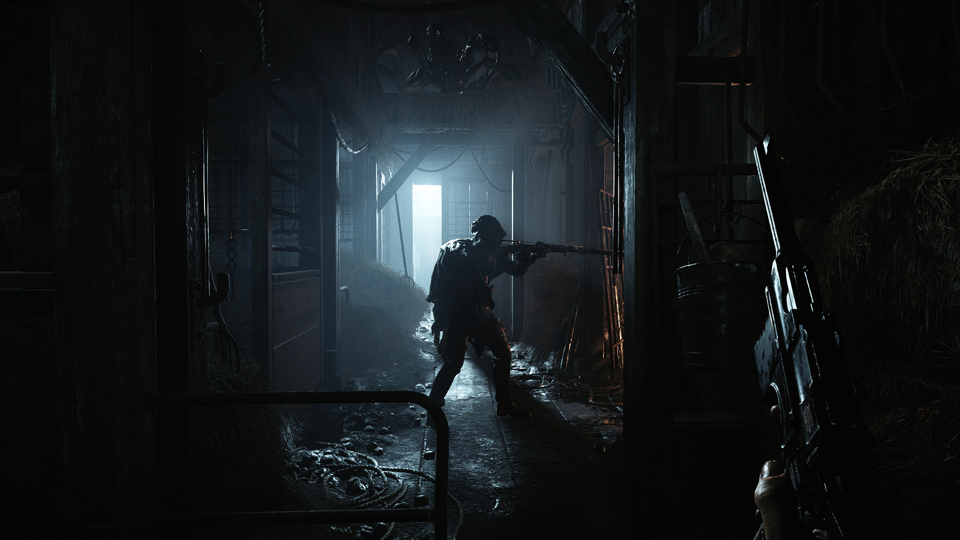 Hunt Showdown closed alpha key