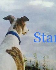 Greys Kanza Star.jpg