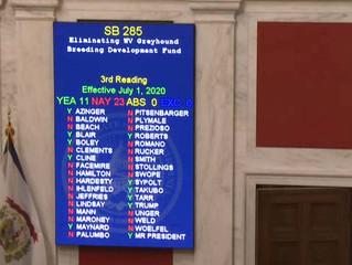 Updated: W.Va. Senators Reject Bill to End Greyhound Breeders Fund