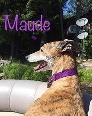 Along cake Maude.jpg