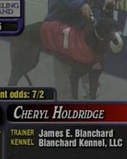 Greyhound_Cheryl_Holdridge-_2big.jpg