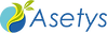 Logo-ASETYS.png