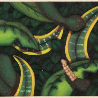 Coiled Snake in Bush