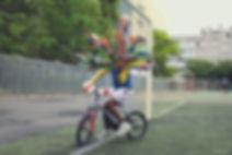 2_-_paon_vélo_yeux_paon.jpg