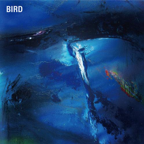 3rd album「BIRD」
