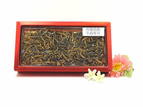 西藏那曲野生冬蟲夏草 1兩 ( 斷草)