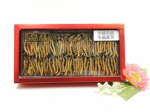 西藏那曲野生冬蟲夏草 1兩 ( 約150-160條)