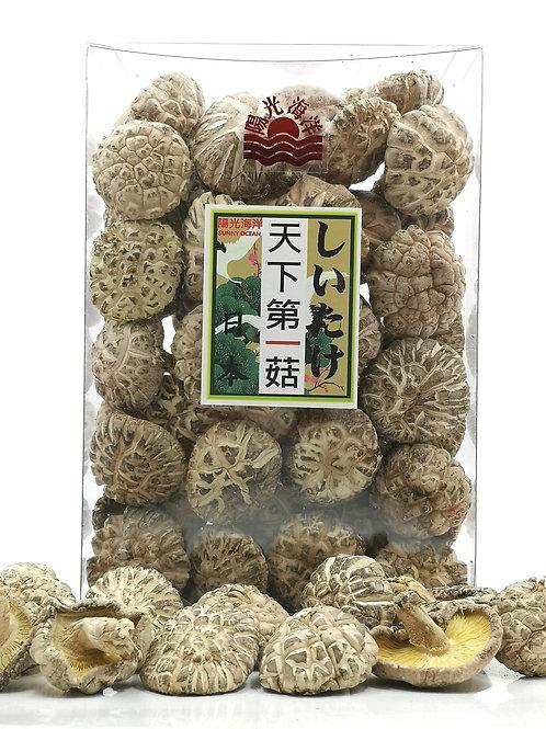 日本天下第一菇 (M) 8兩裝