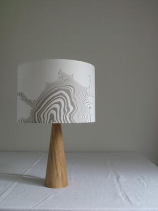 30 cm lampshade using suminagashi on washi.