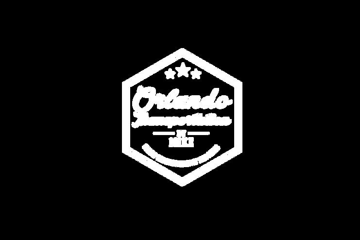 Orlando transportation