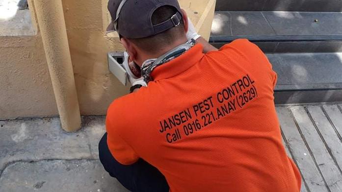 termite-inspection-cebu.jpeg