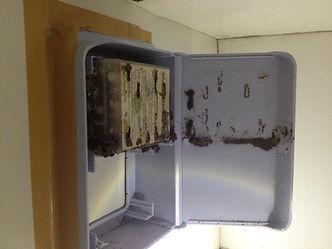termite-baiting-above-ground-station.jpg