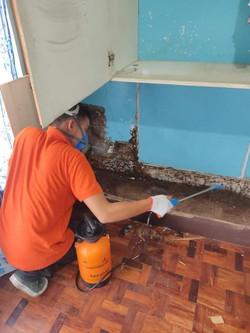 jansen-pest-control-termite-control-spra