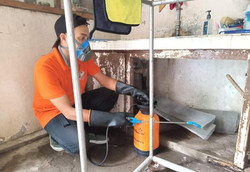 termite-control-spraying