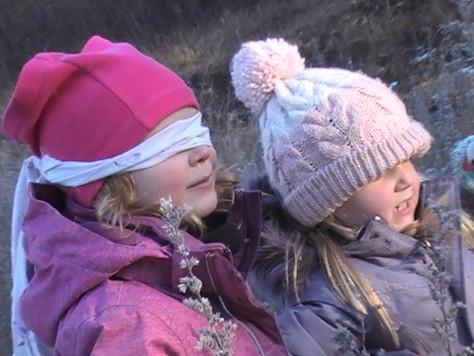 Debrief - PA FOREST DAY in the LANARK HIGHLANDS,                         November 29th, 2019