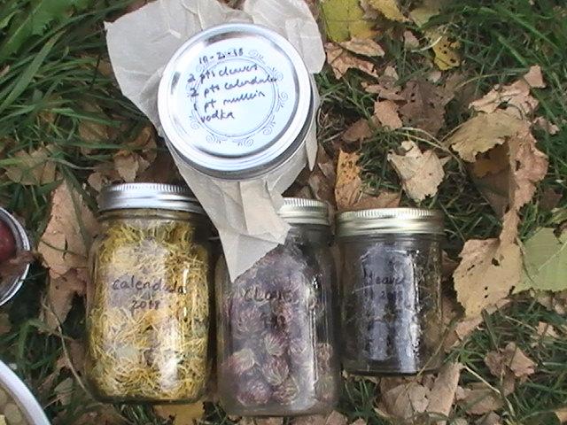Mandy Helmes Herbal Teas