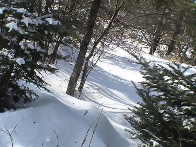 the ski trail