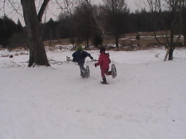 Snow Shoe race to the Balsam Poplar