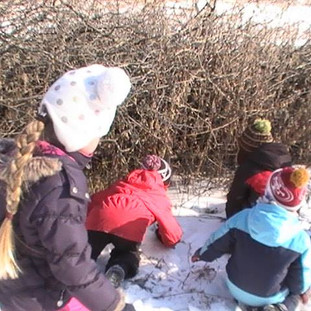 Drummond School students exploring winter habitats and tracks
