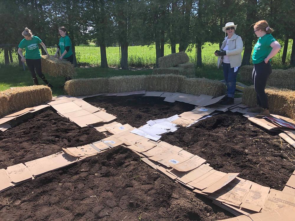 garden prep- mulch mulch, cardboard and more mulch