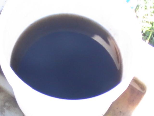 Nettle tea to feed the soil