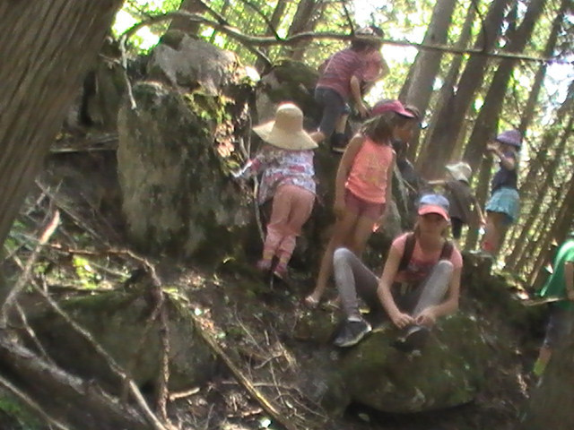group sit spots in the cool shade of the cedar grove