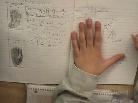 Nature Journal work in the elementary schools