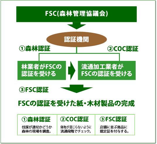 fsc_content2.png