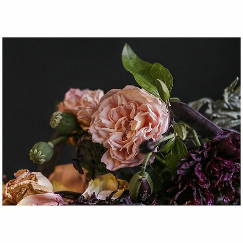 Dusty Pink  Garden Rose Disposable Placemat