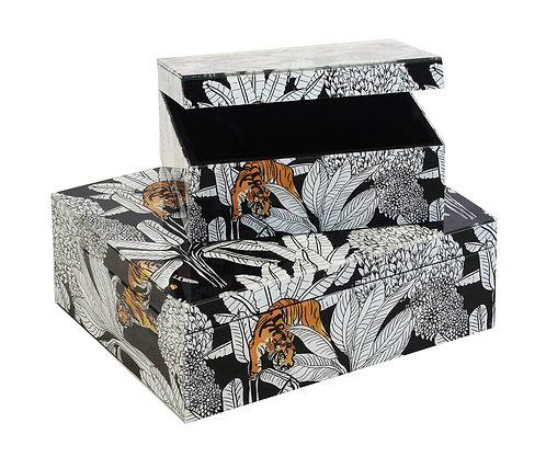 Glass Box Tropical Tiger