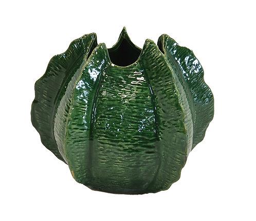 Aloe Pot Small
