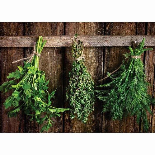24 Disposable Paper Placemat Herb