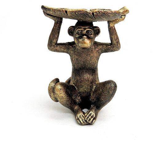 Monkey Koko