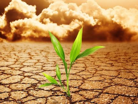 Sabes qué es la Resiliencia?