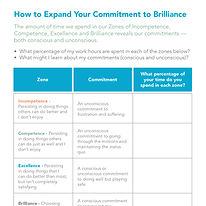 Owning_Your_Brilliance_v4-1.jpg