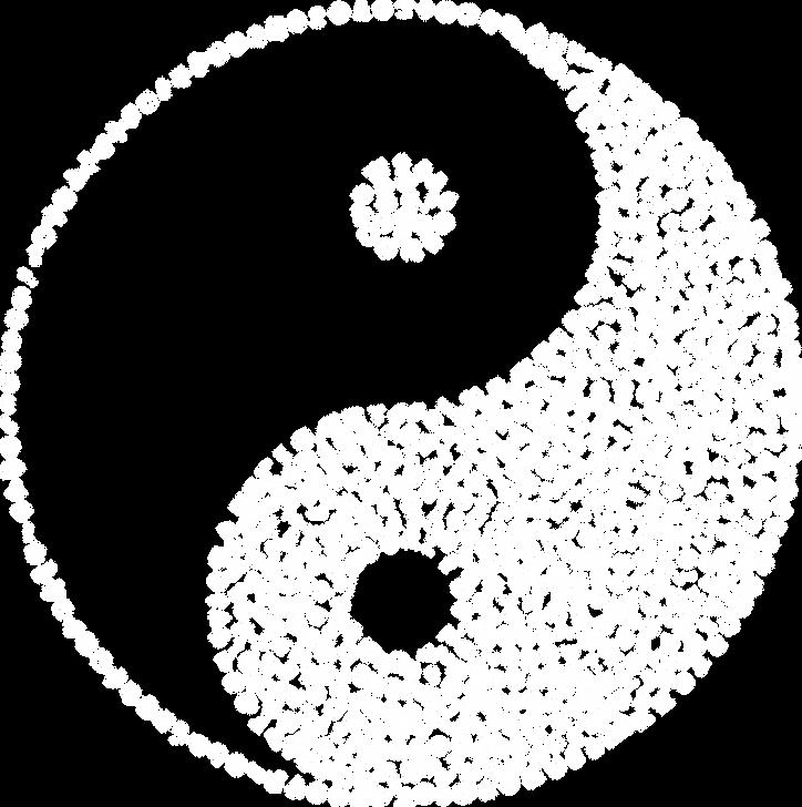 yin-yang-5178888_1280 blanc.png