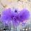 Thumbnail: Ready to Ship Purple Newborn Tutu Set -0001